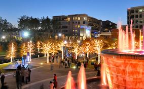 2017 Houston Christmas Lights Tours : Houston Christmas Lights Limo Tours