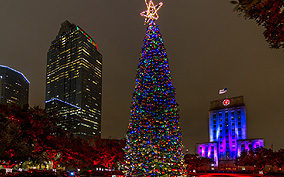 Houston Christmas Light Tours
